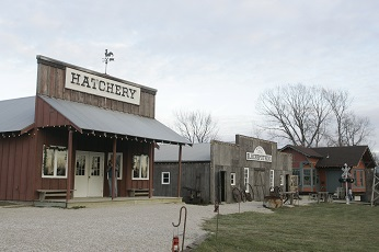 Hatchery in Farm Town